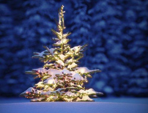 Julegrantenning på Tveteråsen